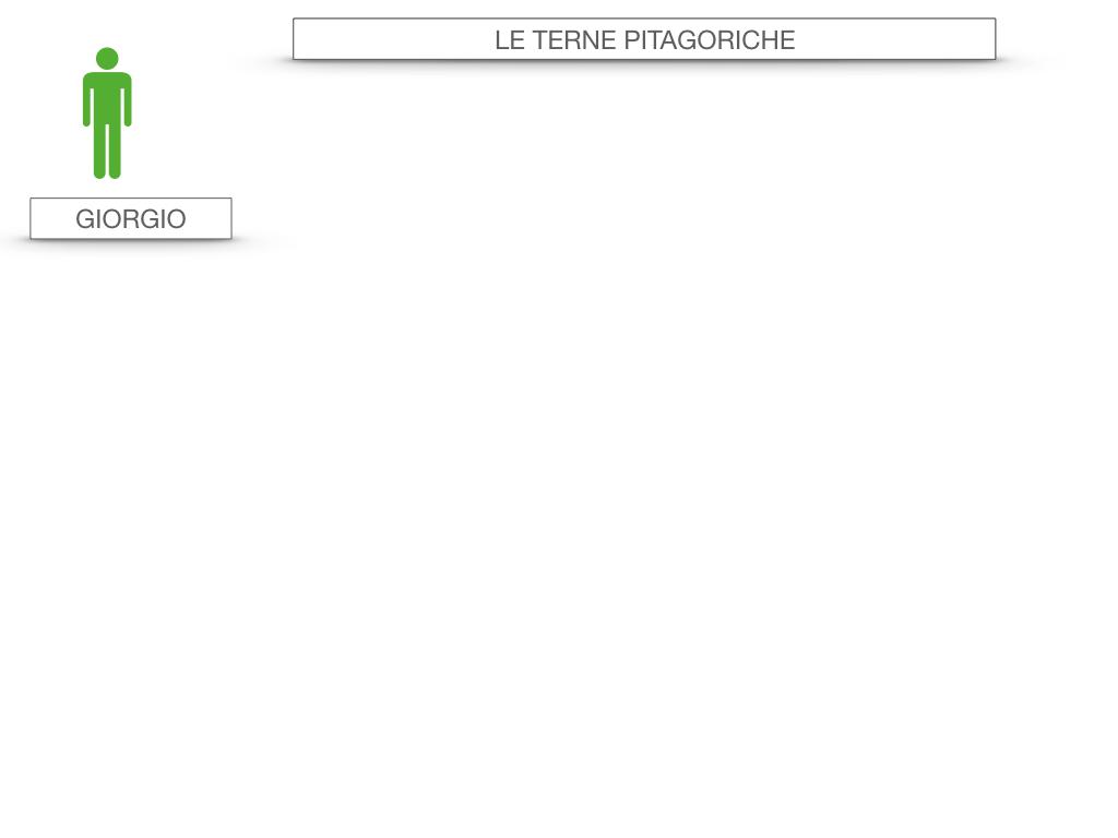 14. LE TERNE PITAGORICHE_SIMULAZIONE.002