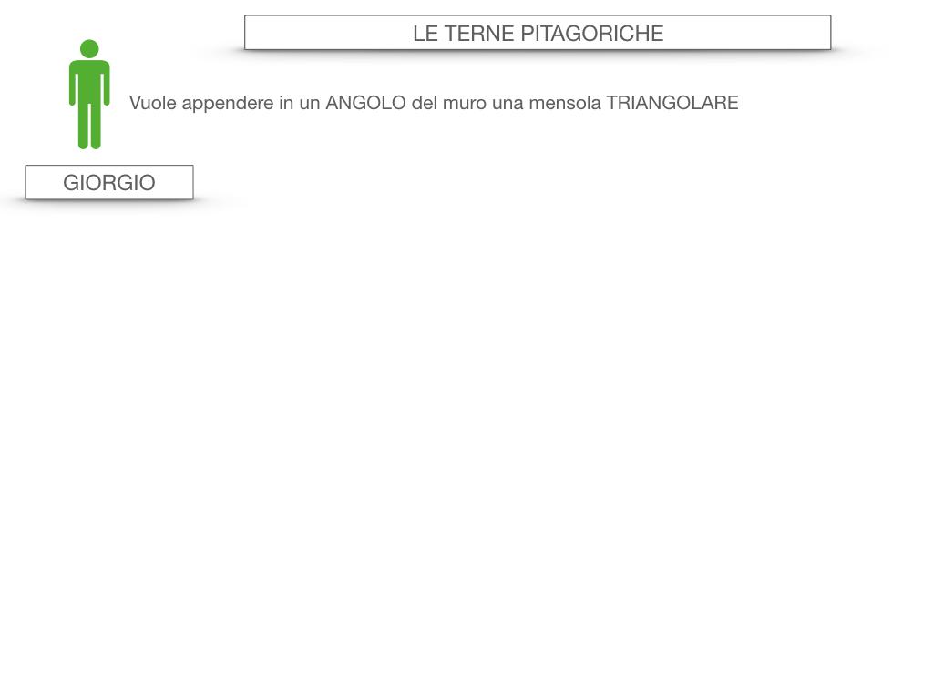 14. LE TERNE PITAGORICHE_SIMULAZIONE.003