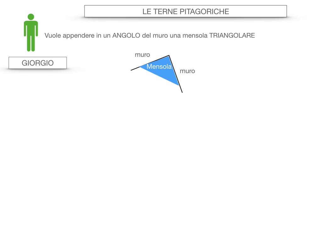 14. LE TERNE PITAGORICHE_SIMULAZIONE.005