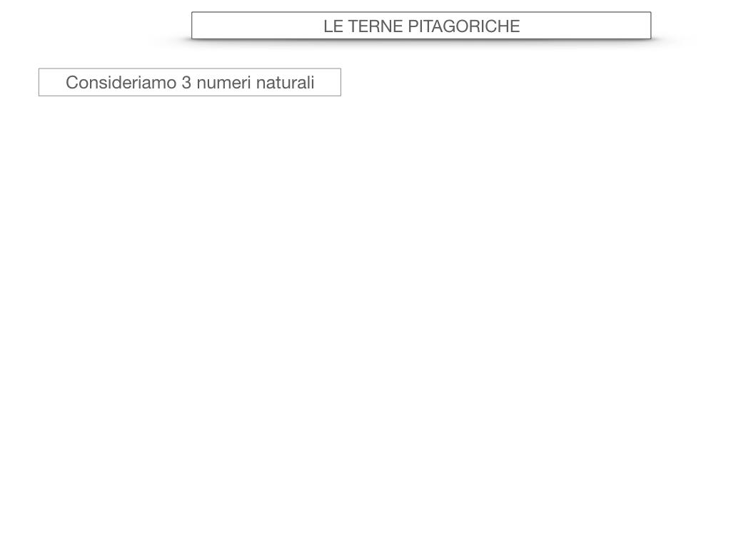 14. LE TERNE PITAGORICHE_SIMULAZIONE.013