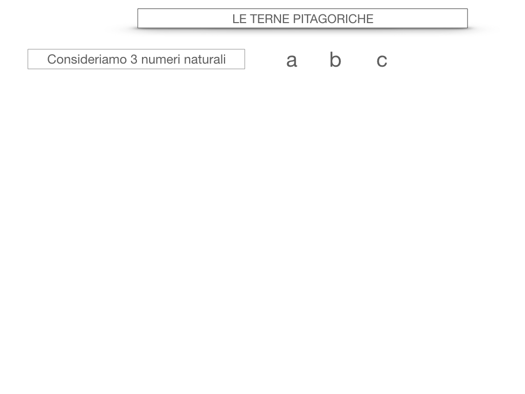 14. LE TERNE PITAGORICHE_SIMULAZIONE.014