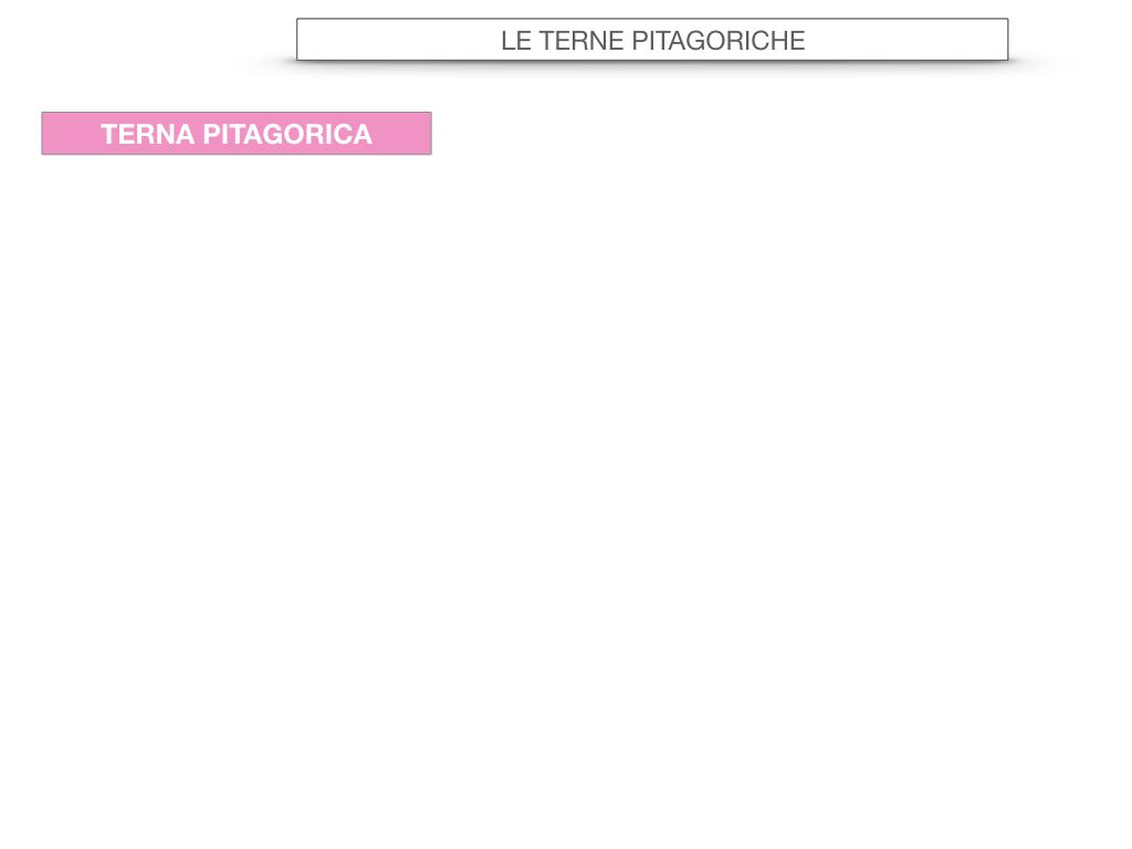 14. LE TERNE PITAGORICHE_SIMULAZIONE.041