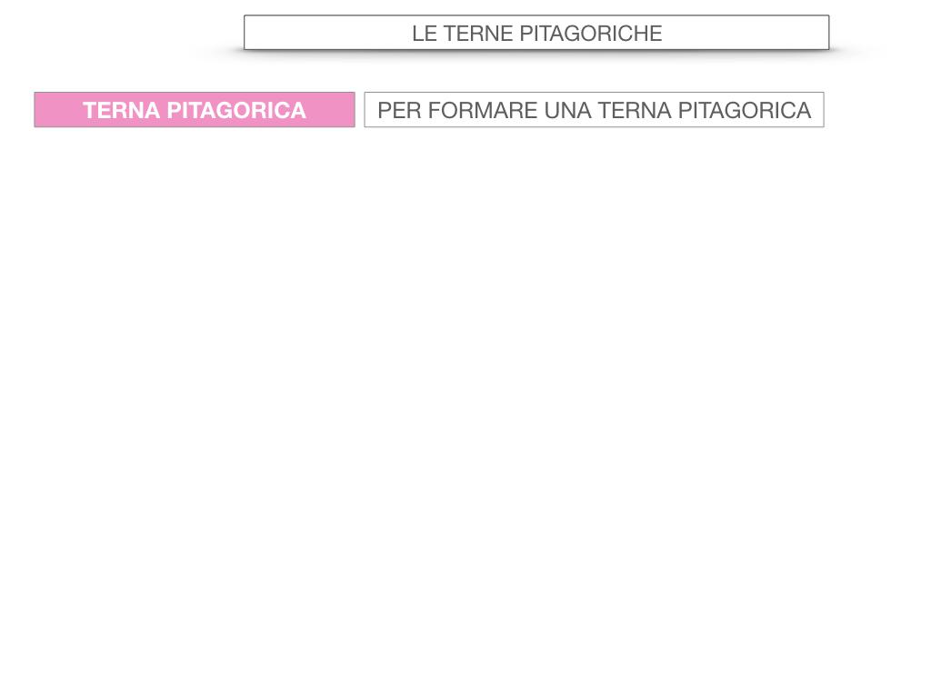 14. LE TERNE PITAGORICHE_SIMULAZIONE.042