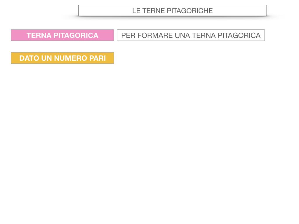 14. LE TERNE PITAGORICHE_SIMULAZIONE.060