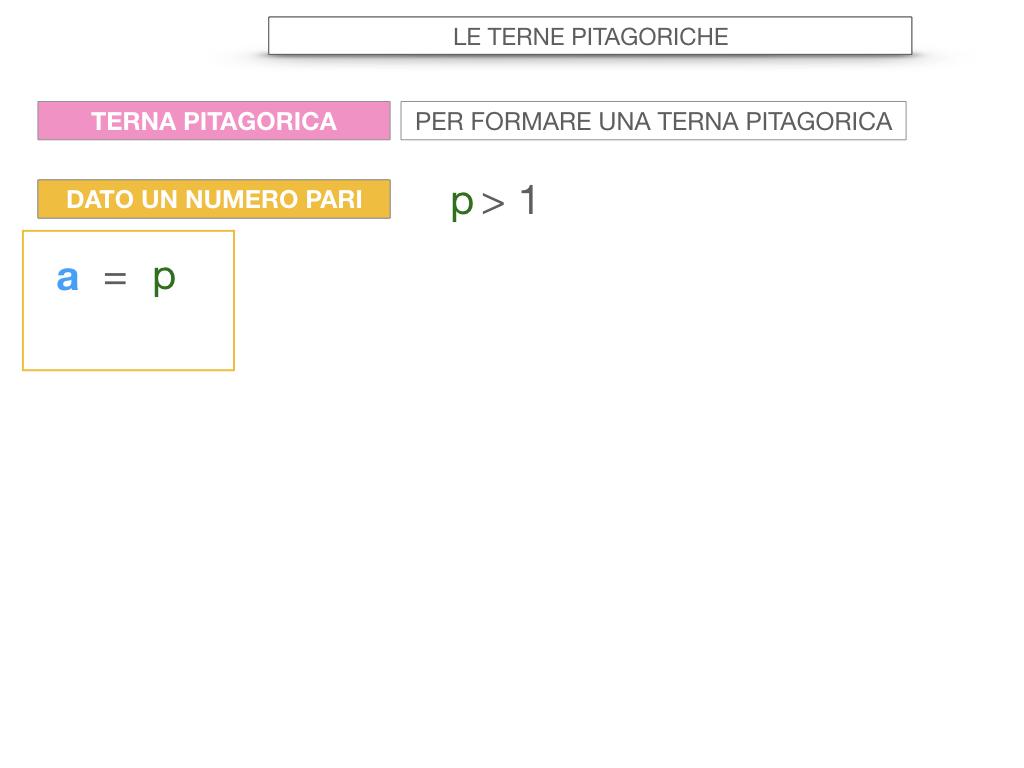 14. LE TERNE PITAGORICHE_SIMULAZIONE.062