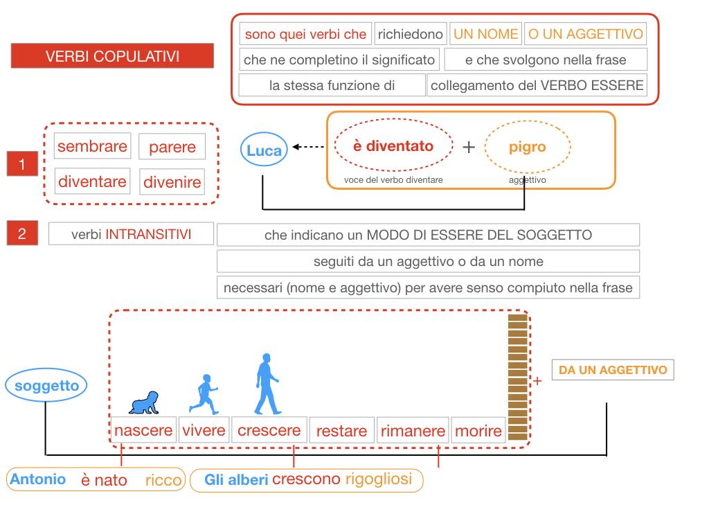 14. VERBI COPULATIVI E PREDICATIVO DEL SOGGETTO_FRASE NOMINALE_SIMULAZIONE.084