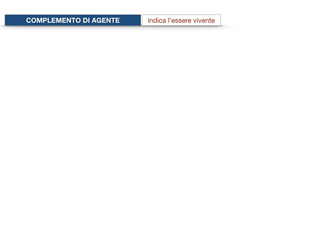 22.COMPLEMENTI_AGENTE_CAUSA_EFFICIENTE_SIMULAZIONE.019