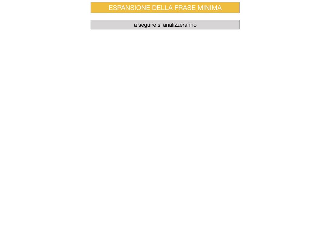 8. L'ESPANSIONE DELLA FRASE MINIMA _SIMULAZIONE.067