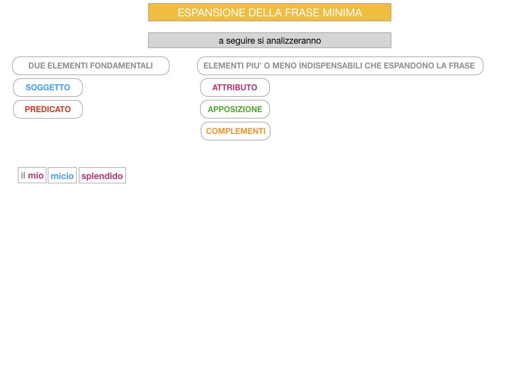 8. L'ESPANSIONE DELLA FRASE MINIMA _SIMULAZIONE.077