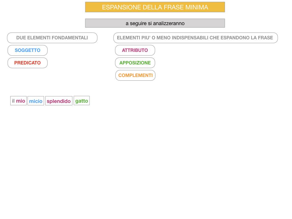 8. L'ESPANSIONE DELLA FRASE MINIMA _SIMULAZIONE.078