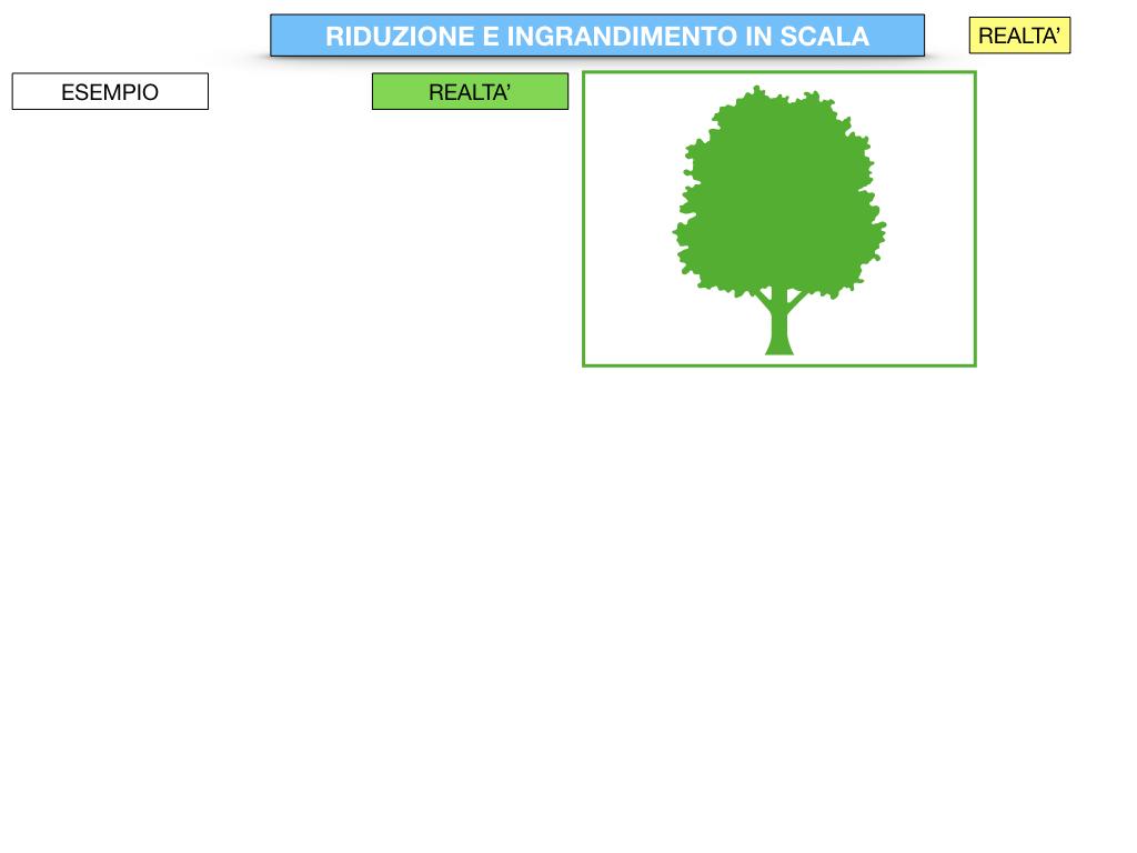 RIDUZIONE E INGRANDIMENTO IN SCALA_SIMULAZIONE.017