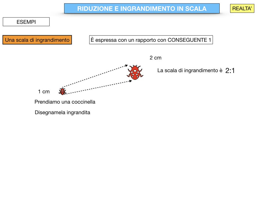 RIDUZIONE E INGRANDIMENTO IN SCALA_SIMULAZIONE.044