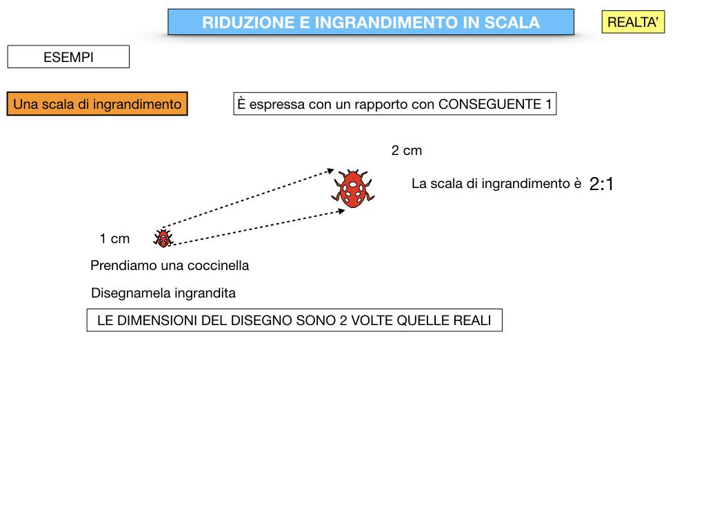 RIDUZIONE E INGRANDIMENTO IN SCALA_SIMULAZIONE.045