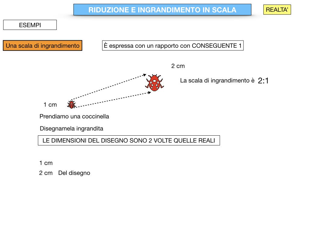 RIDUZIONE E INGRANDIMENTO IN SCALA_SIMULAZIONE.046