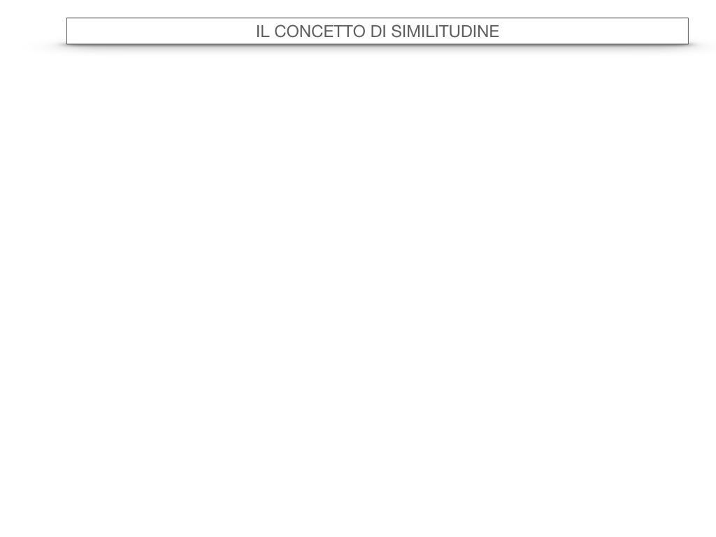 25. LA SIMILITUDINE_SIMULAZIONE.001