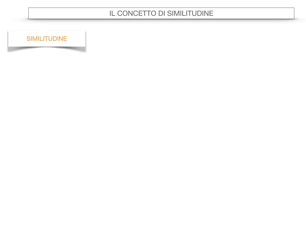 25. LA SIMILITUDINE_SIMULAZIONE.017