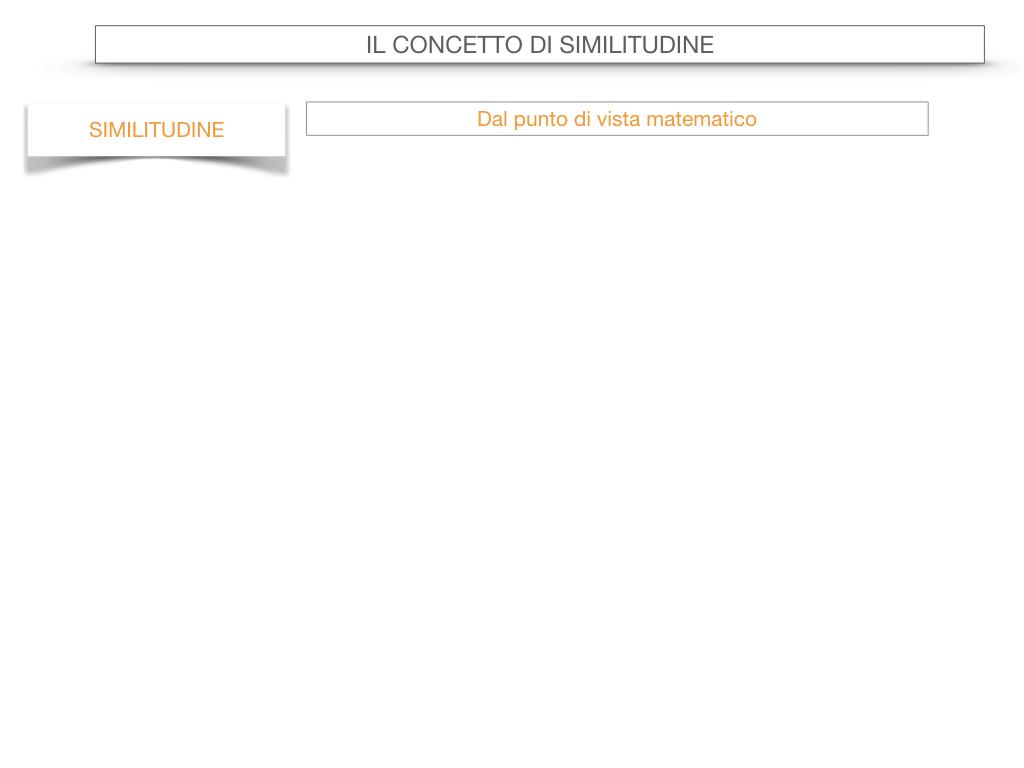 25. LA SIMILITUDINE_SIMULAZIONE.018