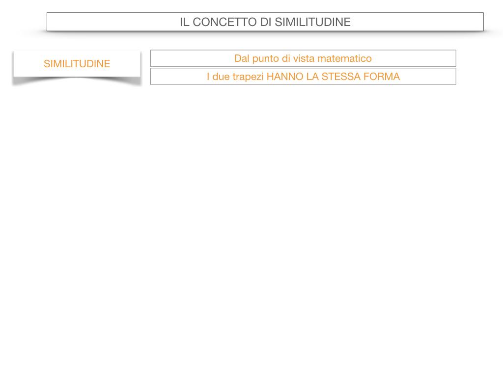 25. LA SIMILITUDINE_SIMULAZIONE.019