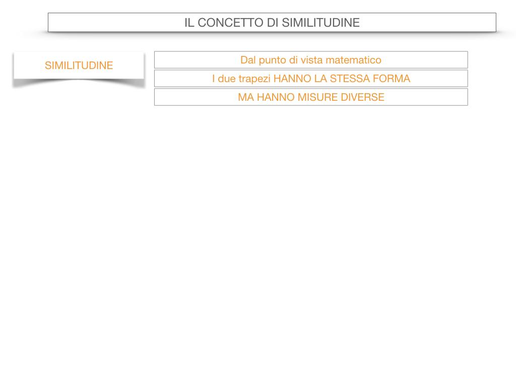 25. LA SIMILITUDINE_SIMULAZIONE.020