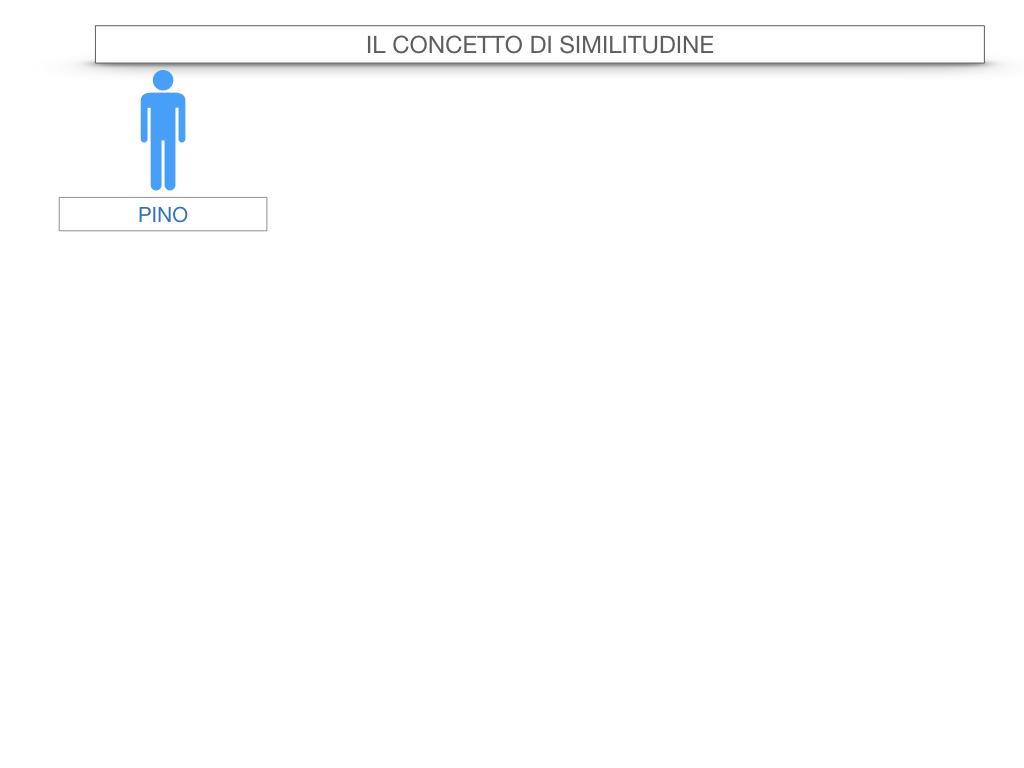 26. CRITERI DI SIMILITUDINE DEI TRIANGOLI_SIMULAZIONE.002