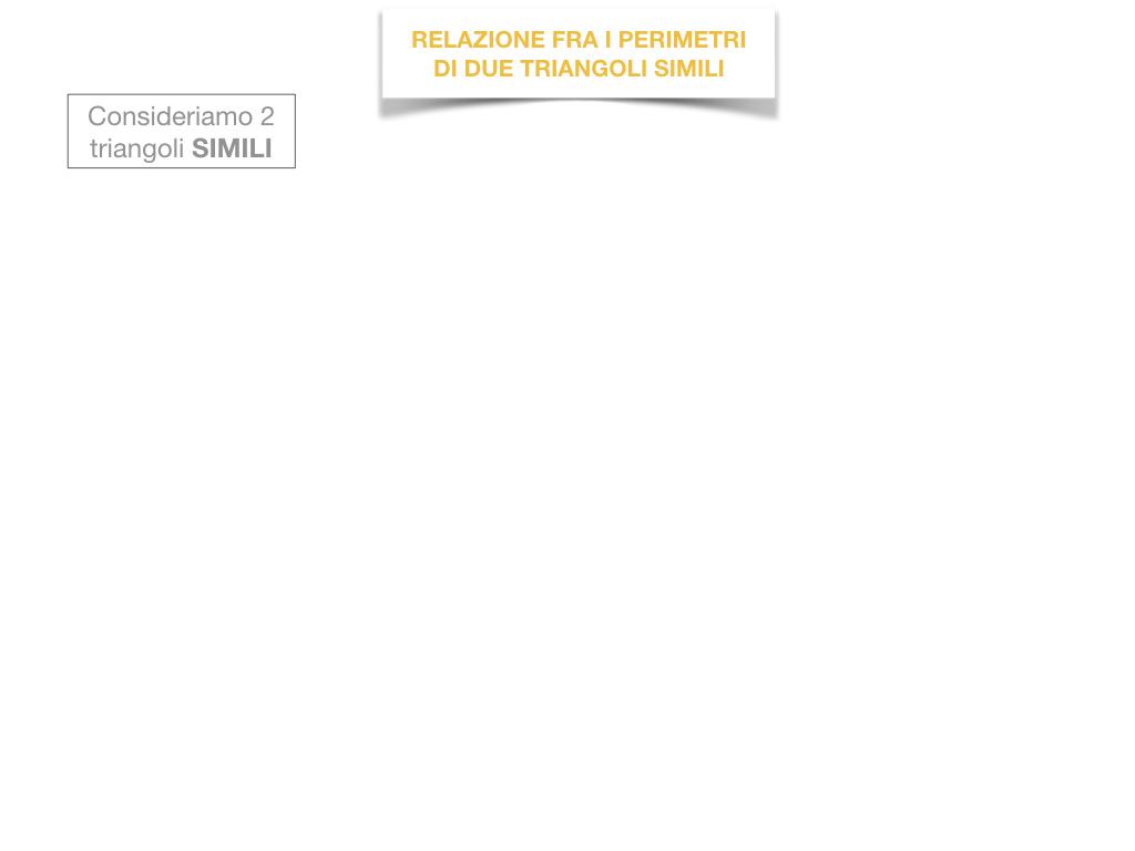 27. RELAZIONI FRA POLIGONI SIMILI_SIMULAZIONE.041