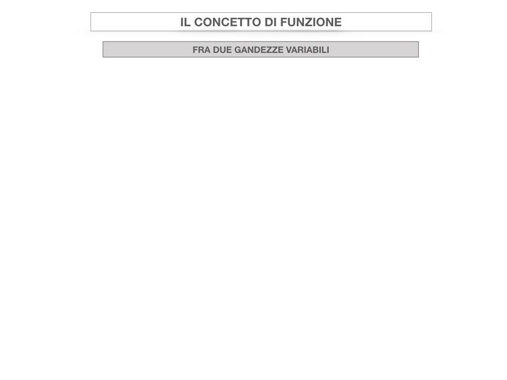 28. FUNZIONI E PROPORZIONALITA'_SIMULAZIONE.060