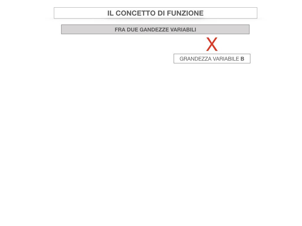 28. FUNZIONI E PROPORZIONALITA'_SIMULAZIONE.061