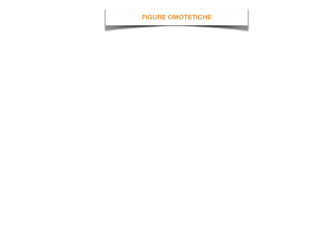 31. COSTRUZIONE DI FIGURE SIMILI_SIMULAZIONE.001