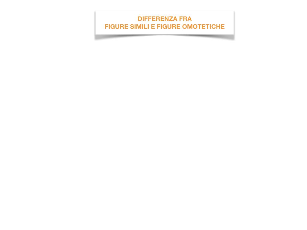31. COSTRUZIONE DI FIGURE SIMILI_SIMULAZIONE.083