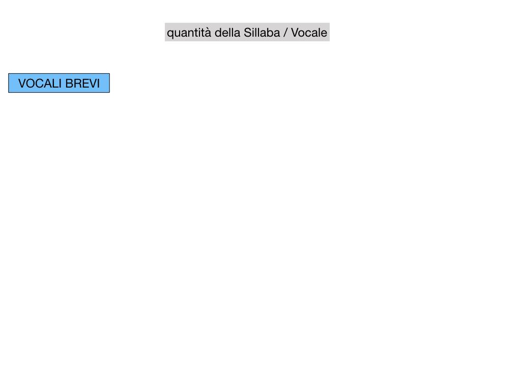 1. LATINO_ALFABETO_ACCENTO__SIMULAZIONE.066