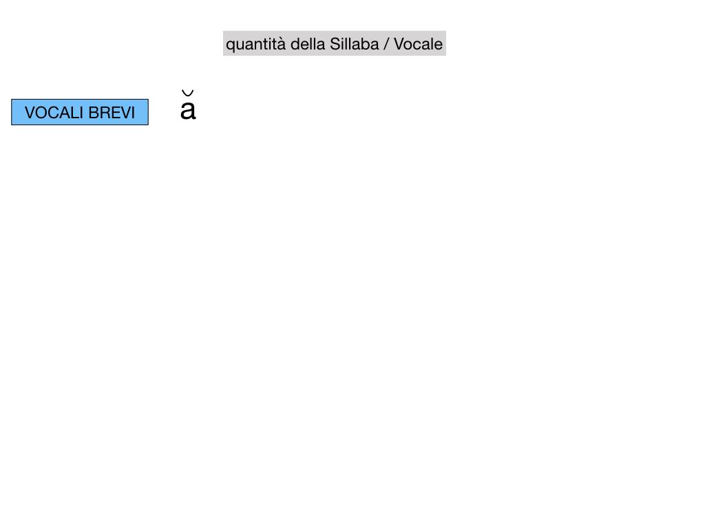 1. LATINO_ALFABETO_ACCENTO__SIMULAZIONE.067