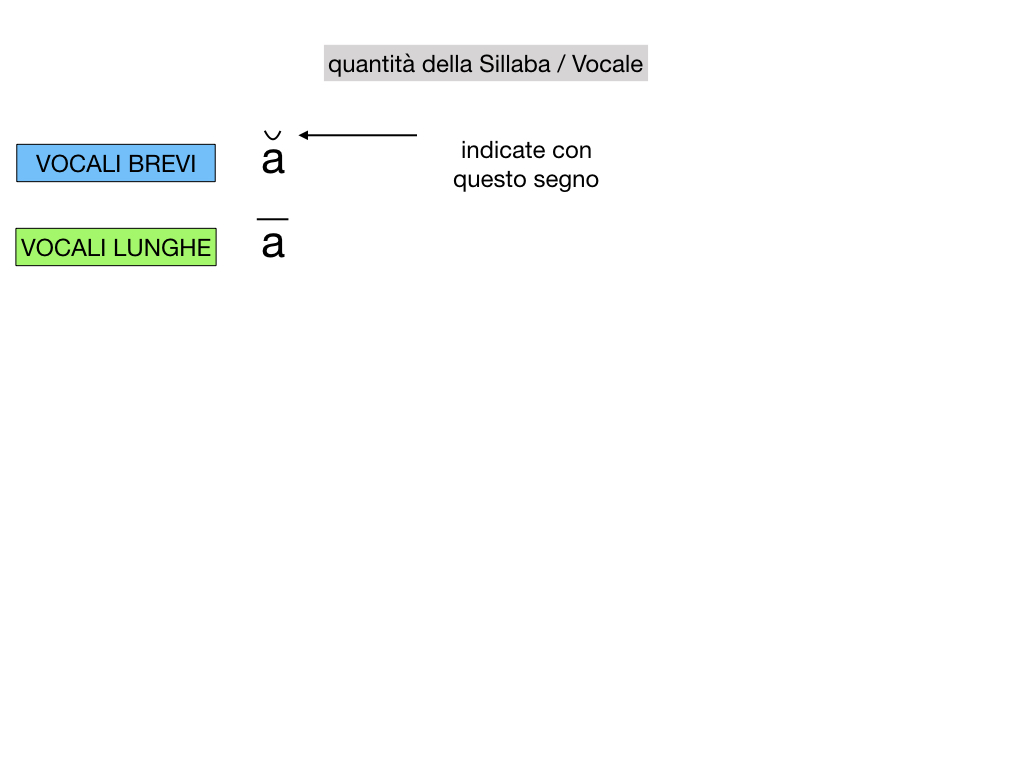 1. LATINO_ALFABETO_ACCENTO__SIMULAZIONE.069
