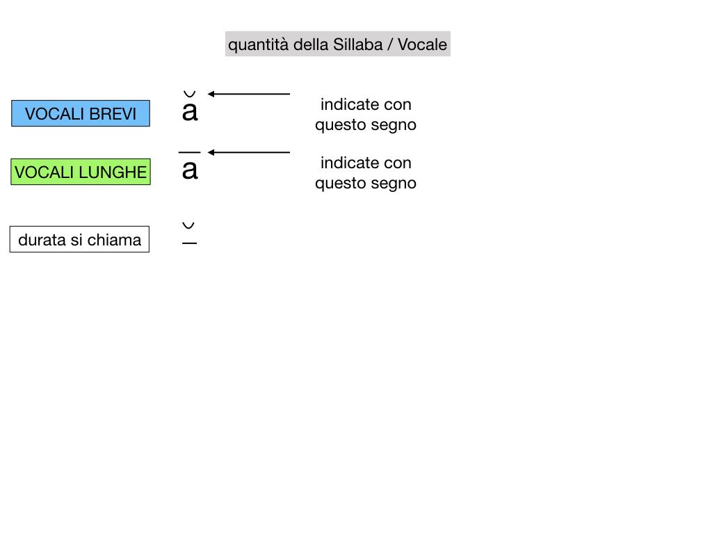 1. LATINO_ALFABETO_ACCENTO__SIMULAZIONE.071