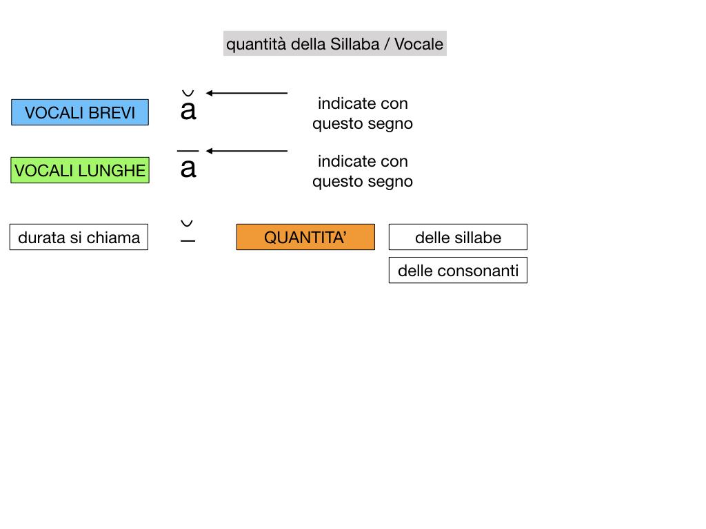 1. LATINO_ALFABETO_ACCENTO__SIMULAZIONE.074