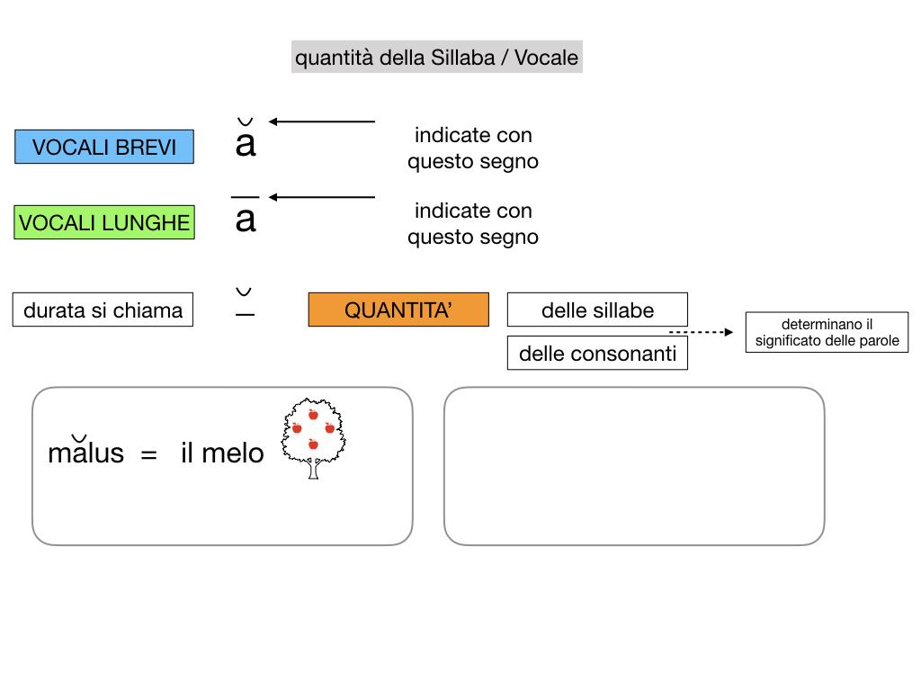 1. LATINO_ALFABETO_ACCENTO__SIMULAZIONE.077
