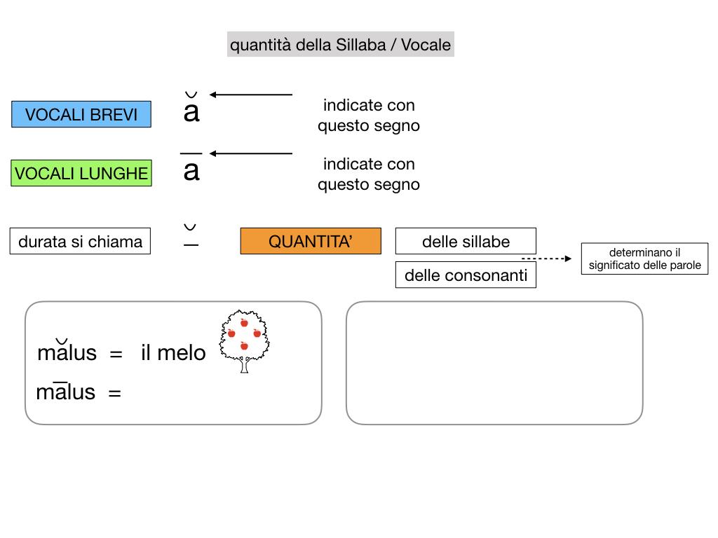1. LATINO_ALFABETO_ACCENTO__SIMULAZIONE.078