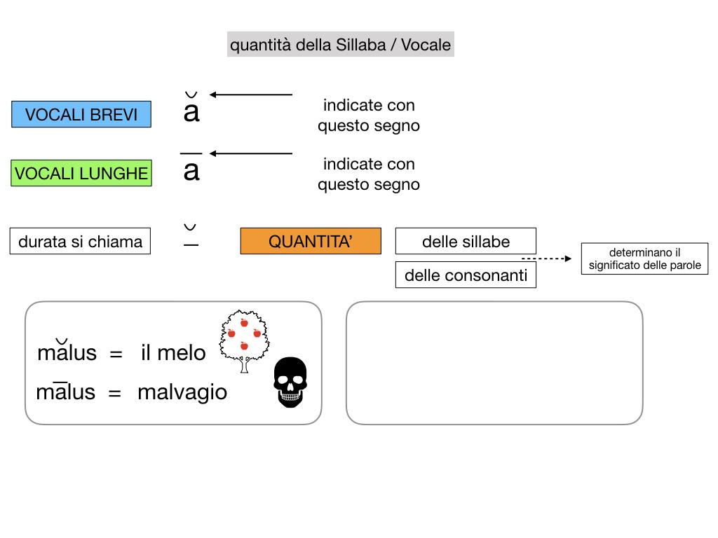 1. LATINO_ALFABETO_ACCENTO__SIMULAZIONE.079
