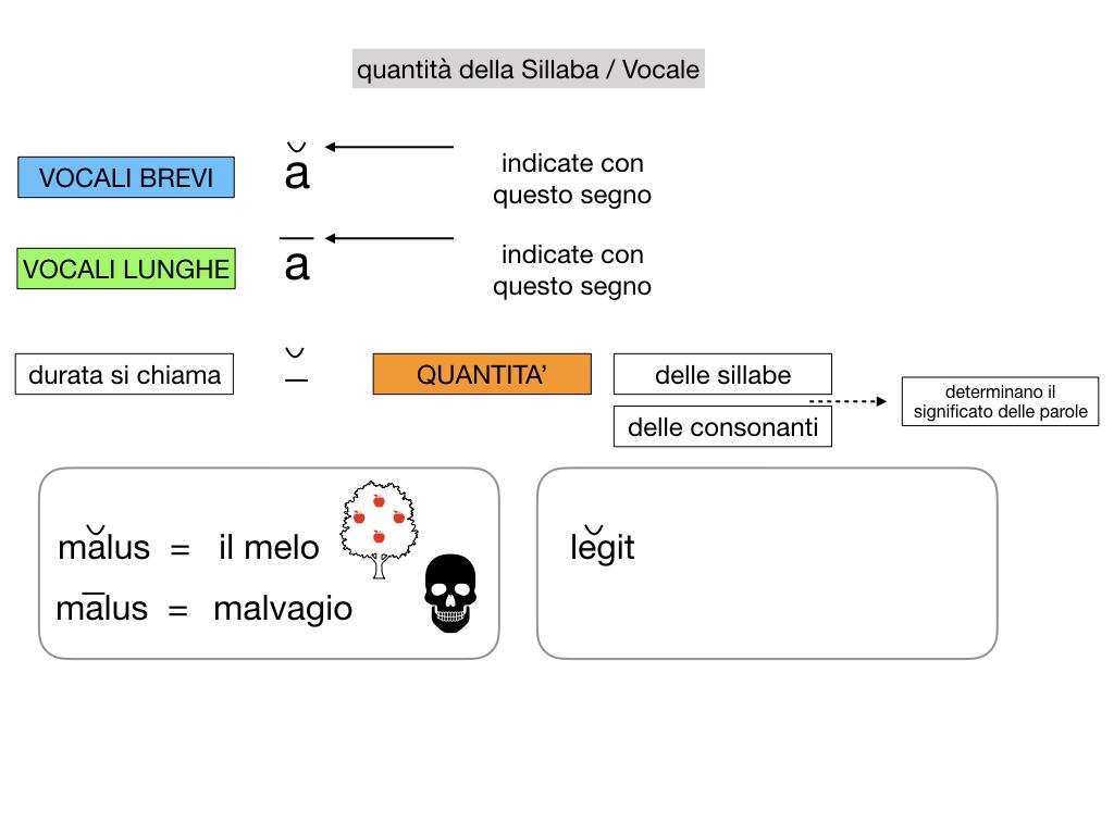 1. LATINO_ALFABETO_ACCENTO__SIMULAZIONE.080