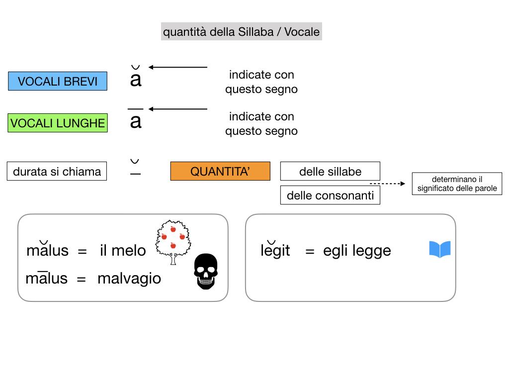 1. LATINO_ALFABETO_ACCENTO__SIMULAZIONE.081