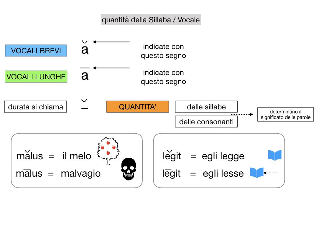 1. LATINO_ALFABETO_ACCENTO__SIMULAZIONE.082