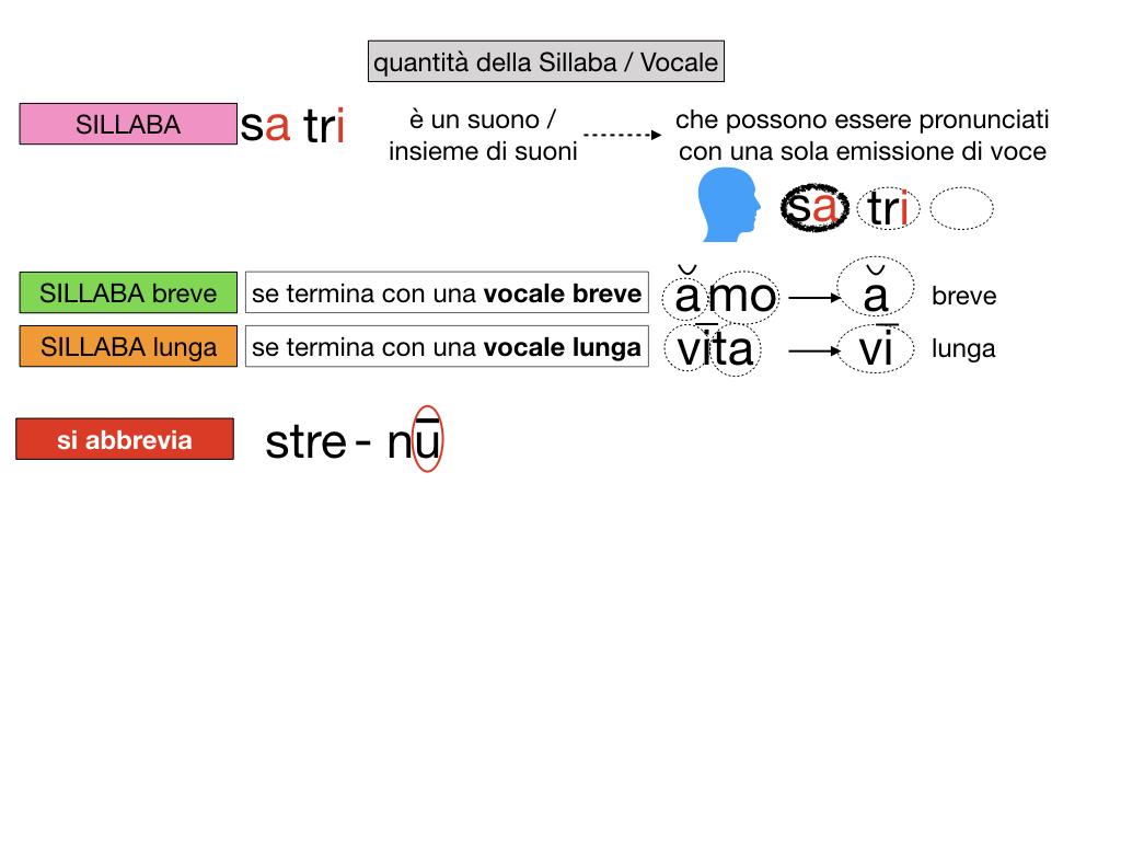 1. LATINO_ALFABETO_ACCENTO__SIMULAZIONE.103