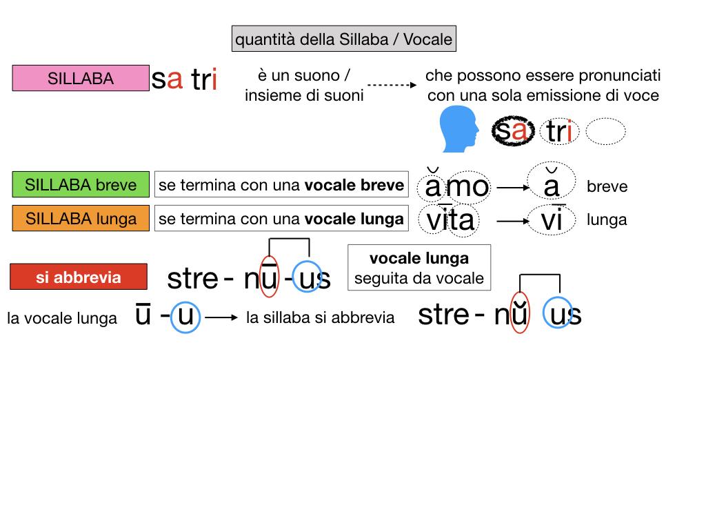 1. LATINO_ALFABETO_ACCENTO__SIMULAZIONE.108