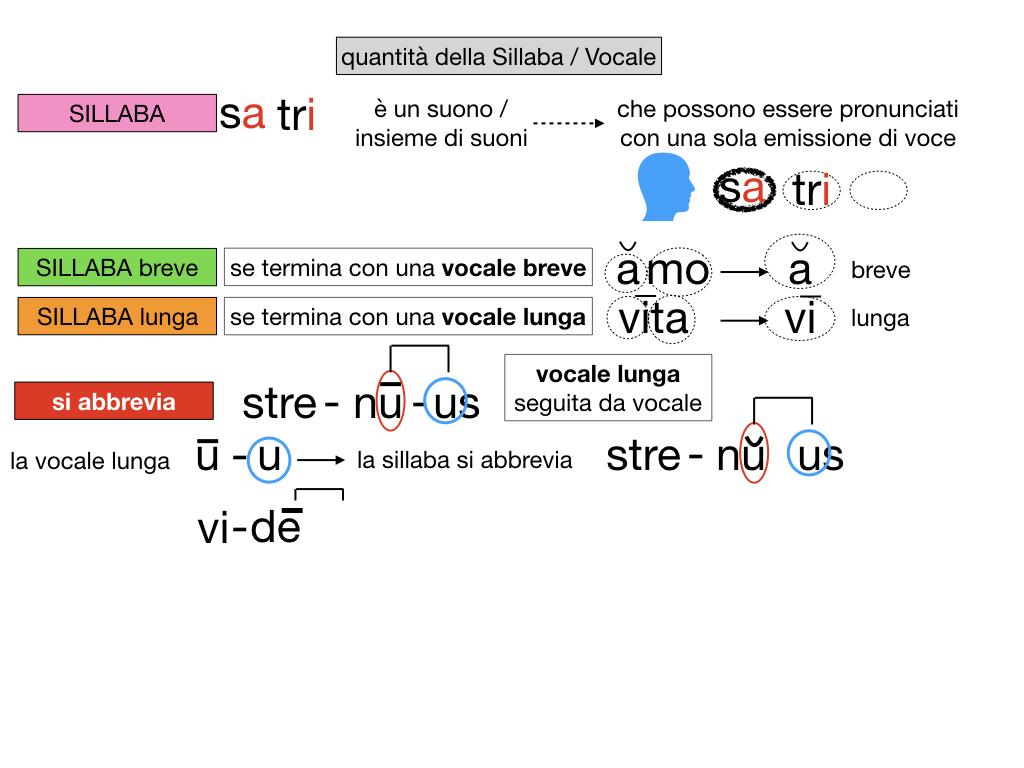 1. LATINO_ALFABETO_ACCENTO__SIMULAZIONE.109