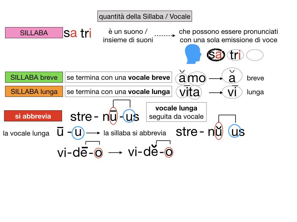 1. LATINO_ALFABETO_ACCENTO__SIMULAZIONE.111