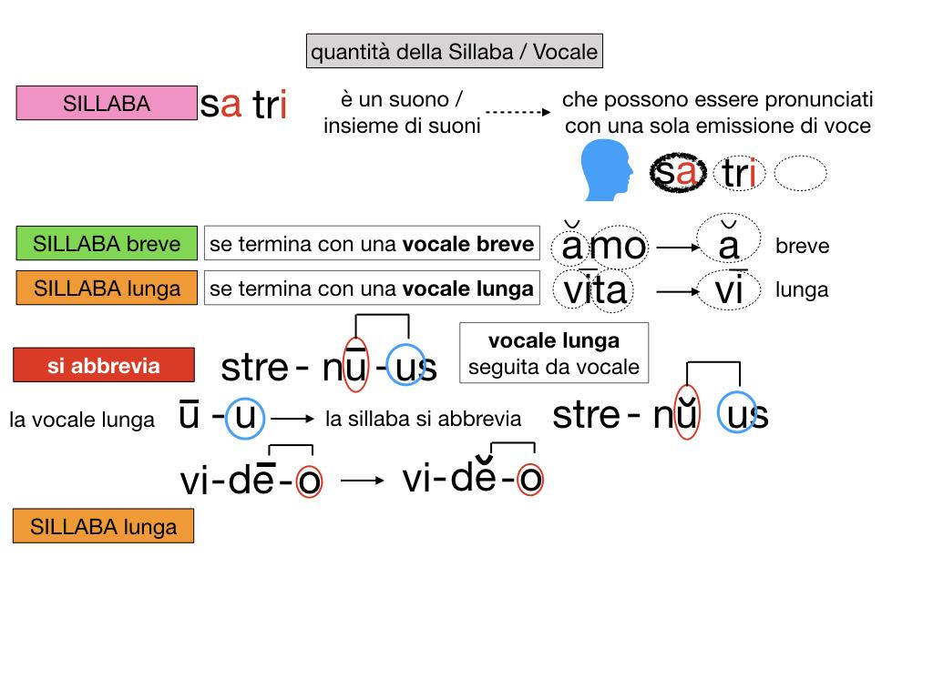 1. LATINO_ALFABETO_ACCENTO__SIMULAZIONE.112