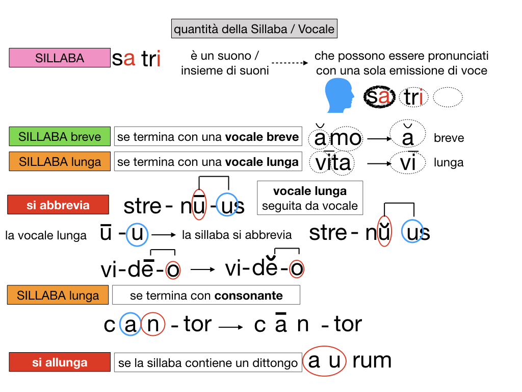 1. LATINO_ALFABETO_ACCENTO__SIMULAZIONE.119