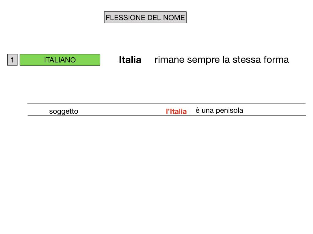 2. FLESSIONE DEL NOME_SOGGETTO E COMPLEMENTO OGGETTO_SIMULAZIONE.007