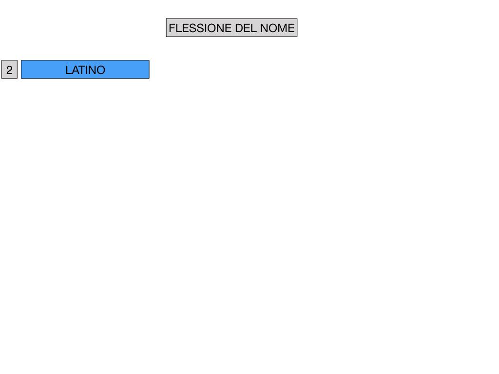 2. FLESSIONE DEL NOME_SOGGETTO E COMPLEMENTO OGGETTO_SIMULAZIONE.024