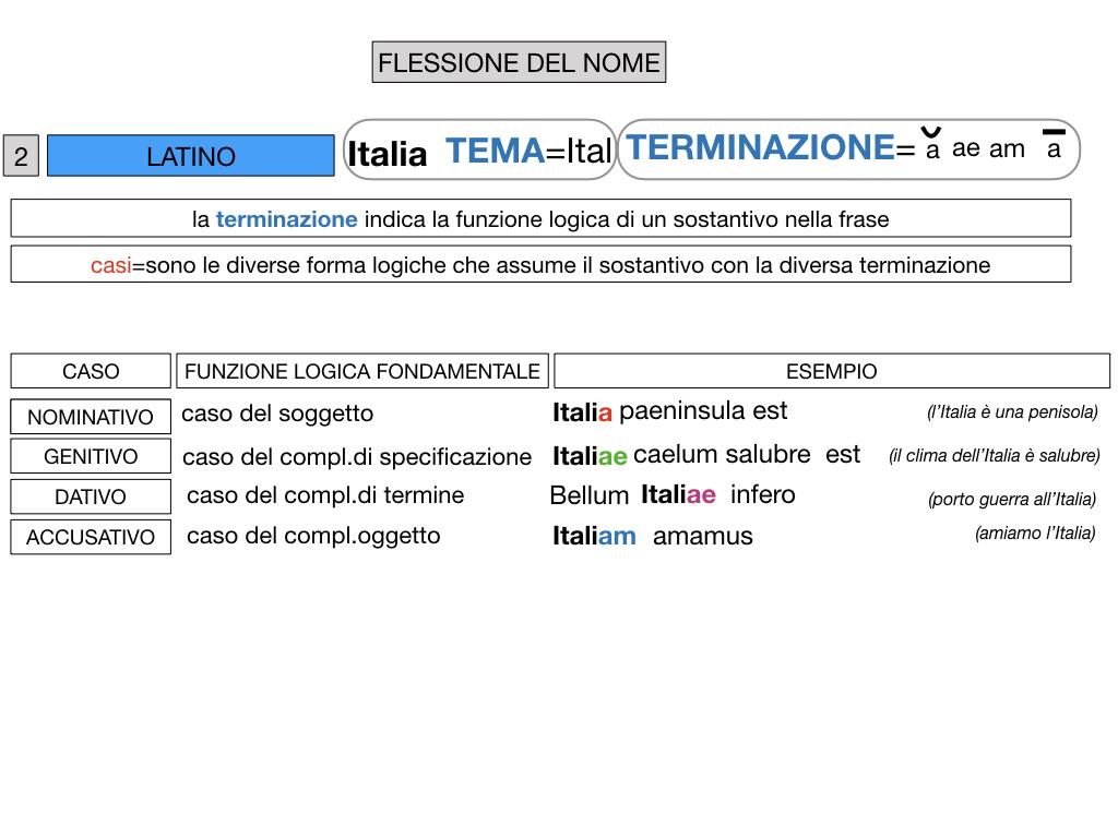 2. FLESSIONE DEL NOME_SOGGETTO E COMPLEMENTO OGGETTO_SIMULAZIONE.049