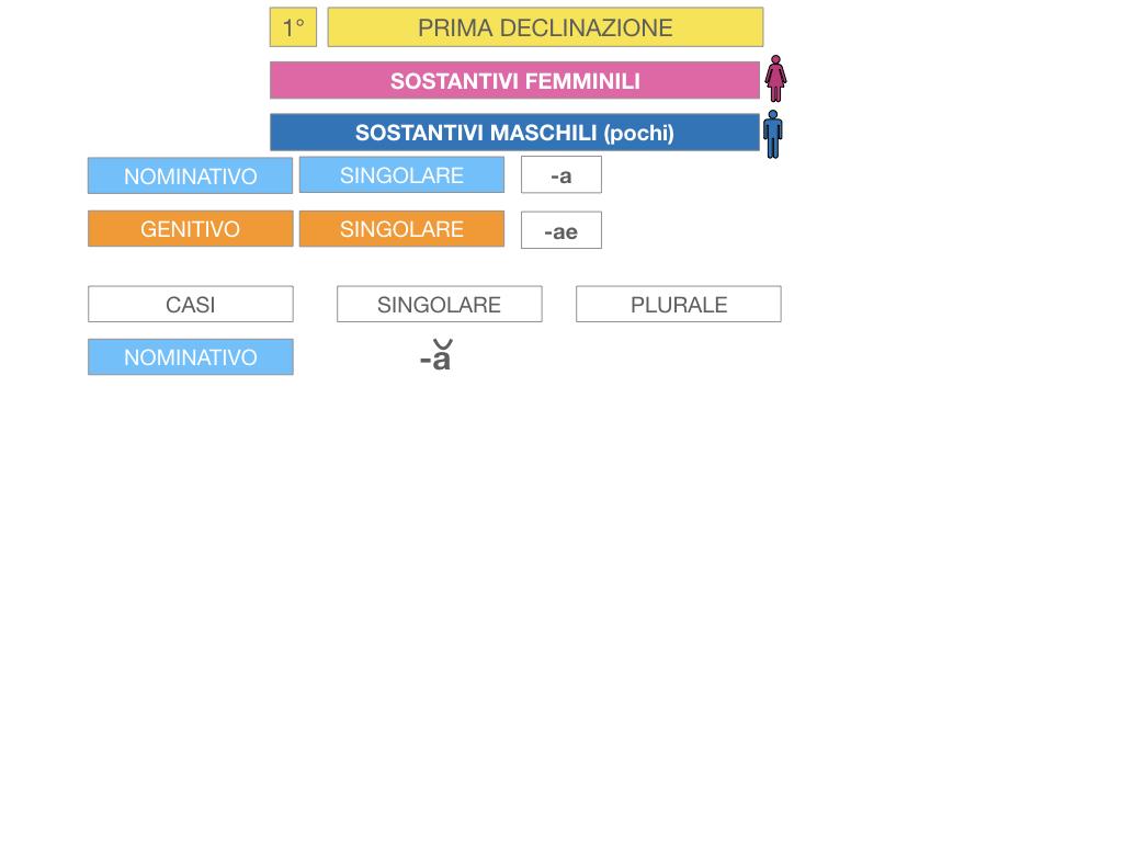 4. PRIMA DECLINAZIONE_SIMULAZIONE.039